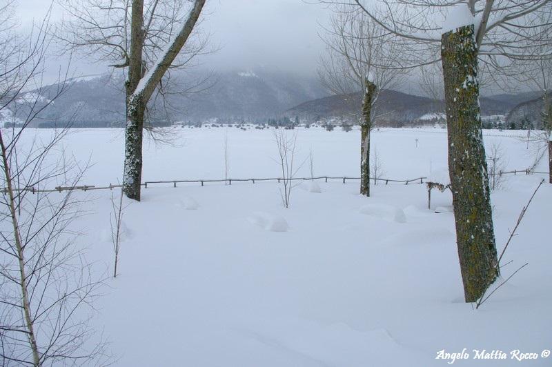 lago-laceno-nevicata-11-febbraio-2012i00021