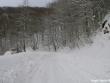 lago-laceno-nevicata-11-febbraio-2012i00002