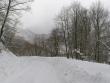 lago-laceno-nevicata-11-febbraio-2012i00003