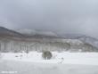 lago-laceno-nevicata-11-febbraio-2012i00011