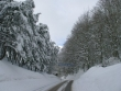 lago-laceno-nevicata-11-febbraio-2012i00012