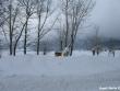 lago-laceno-nevicata-11-febbraio-2012i00017