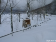 lago-laceno-nevicata-11-febbraio-2012i00019
