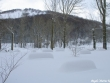 lago-laceno-nevicata-11-febbraio-2012i00023