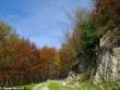 escursione-monte-cervialto-in-autunno-201200007