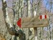 escursione-monte-cervialto-in-autunno-201200015