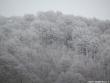 laceno-neve-dicembre-2011-12