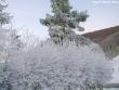 lago-laceno-record-di-freddo-13-dicembre-201200006