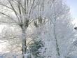 lago-laceno-record-di-freddo-13-dicembre-201200013