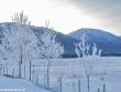 lago-laceno-record-di-freddo-13-dicembre-201200018