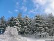 lago-laceno-7-gennaio-201200004