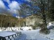 lago-laceno-7-gennaio-201200011