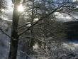 lago-laceno-7-gennaio-201200014