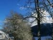 lago-laceno-7-gennaio-201200015
