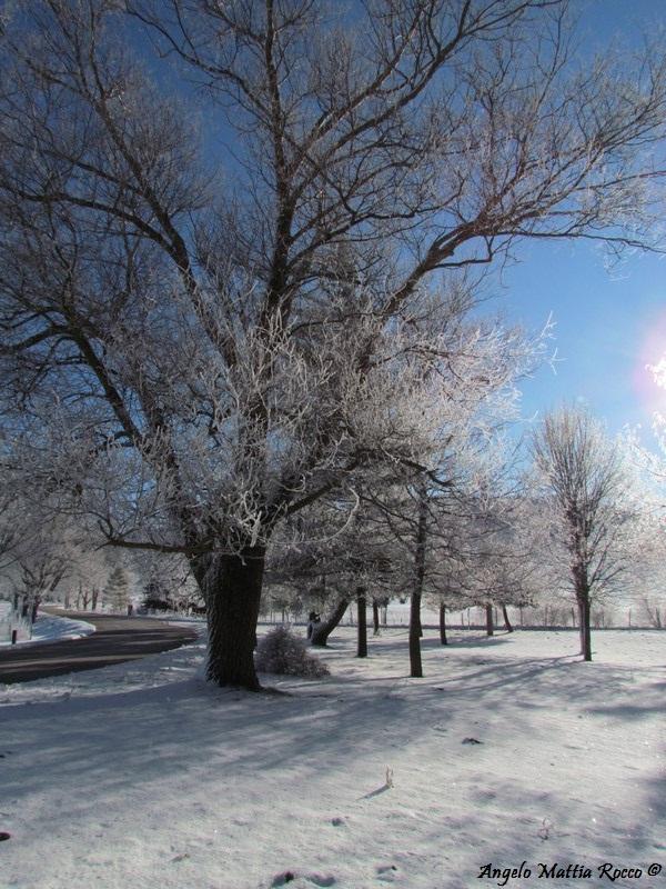 lago-laceno-8-gennaio-201200005