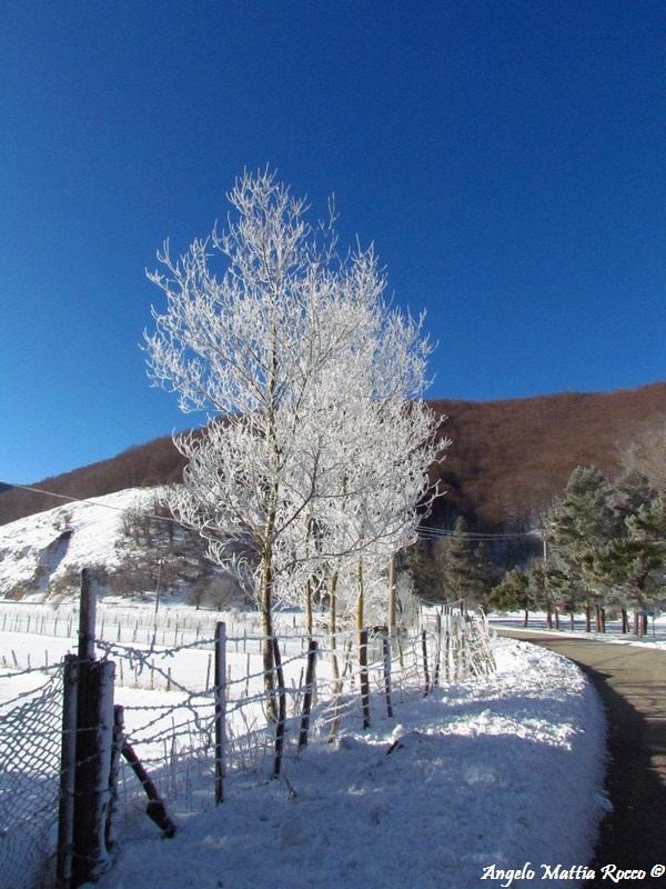 lago-laceno-8-gennaio-201200007