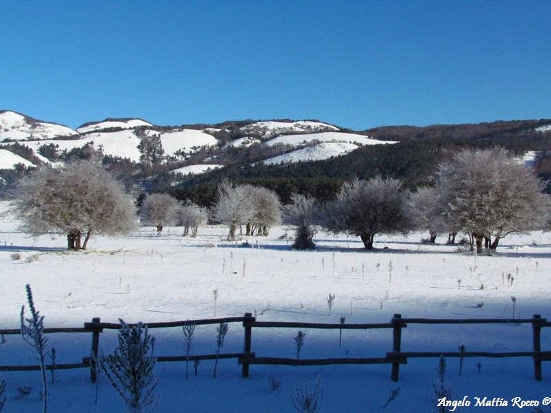 lago-laceno-8-gennaio-201200010