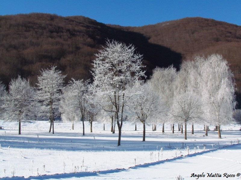 lago-laceno-8-gennaio-201200011