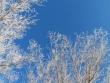 lago-laceno-8-gennaio-201200008