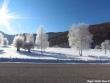 lago-laceno-8-gennaio-201200013