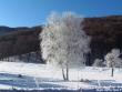 lago-laceno-8-gennaio-201200014