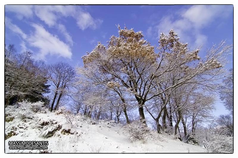 lago-laceno-gennaio-2012-03