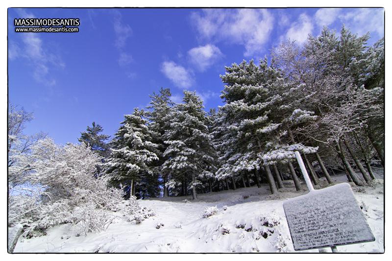 lago-laceno-gennaio-2012-05