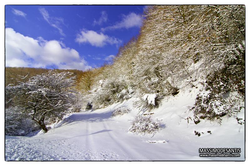 lago-laceno-gennaio-2012-18