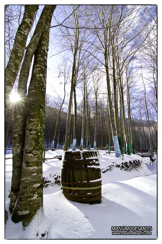 lago-laceno-gennaio-2012-36