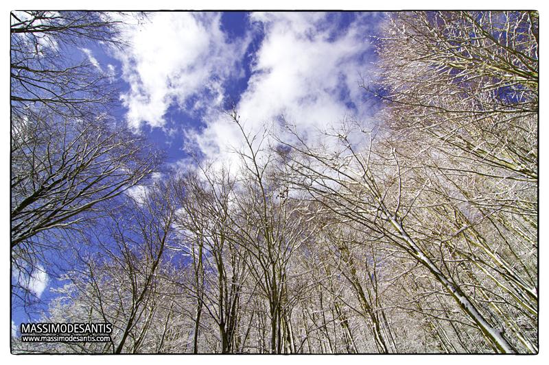 lago-laceno-gennaio-2012-37