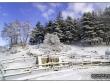 lago-laceno-gennaio-2012-04