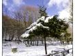 lago-laceno-gennaio-2012-40