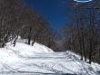 pista-sci-di-fondo-lago-laceno-monte-raiamagra00005
