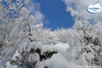 https://www.laceno.net/wp-content/uploads/2013/03/lago-laceno-neve-16-marzo-201300027-800x198.jpg