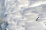 https://www.laceno.net/wp-content/uploads/2014/10/Monte-cervialto-prima-neve-ottobre-2014-24-532x198.jpg