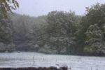 https://www.laceno.net/wp-content/uploads/2016/04/lago-laceno-neve-25-aprile-2016-16.jpg