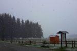 https://www.laceno.net/wp-content/uploads/2016/04/lago-laceno-neve-25-aprile-2016-7.jpg