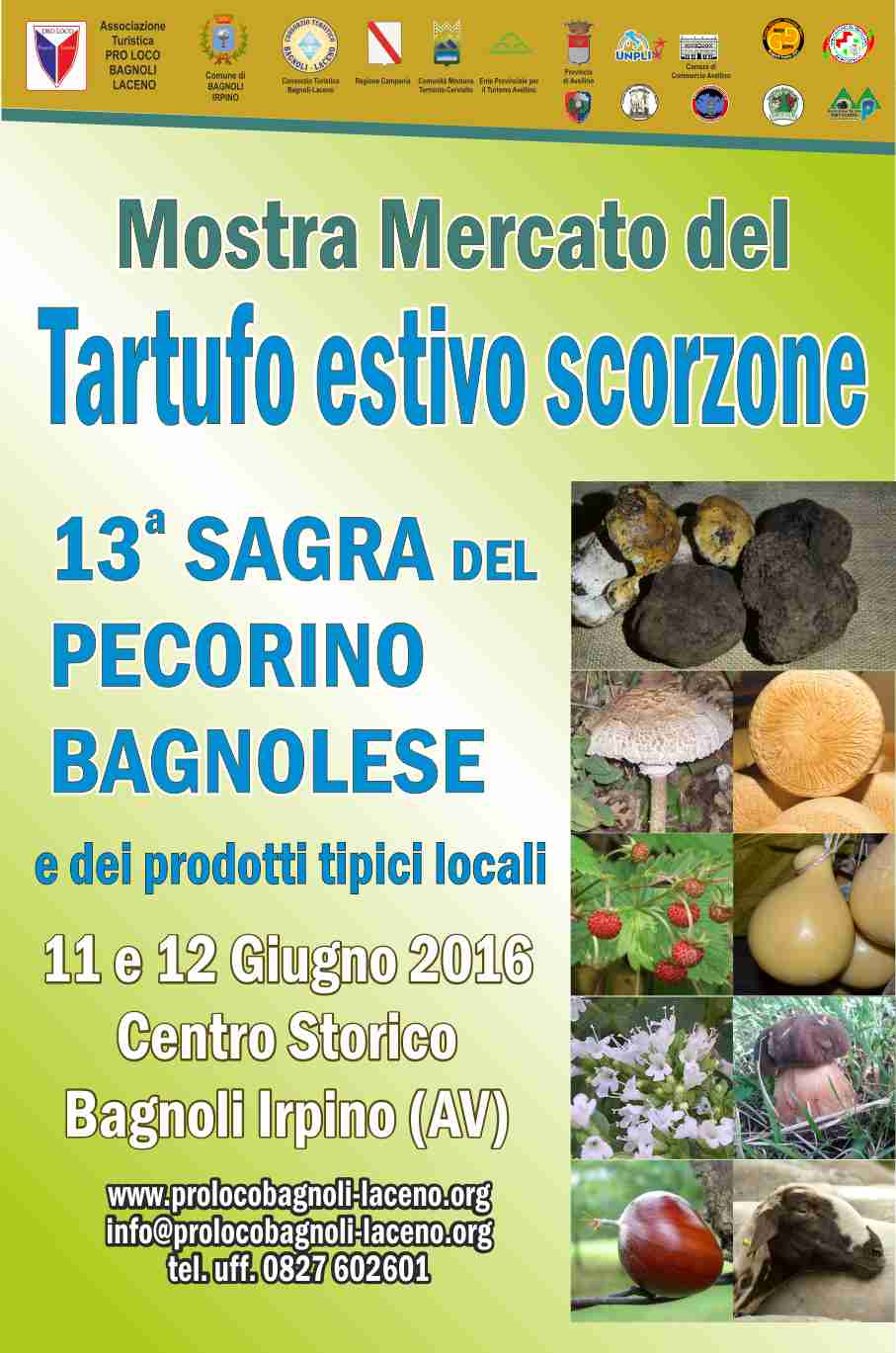 locandina-mostra-tartufo-estivo-scorzone-bagnoli-irpino