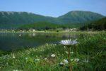 https://www.laceno.net/wp-content/uploads/2016/07/veduta-lago-laceno.jpg